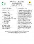 Parent Week at a Glance - Week of June 11-15